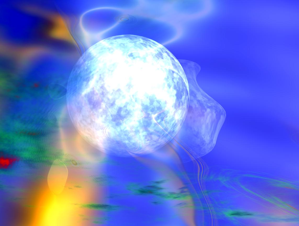 Der Venus Instinkt