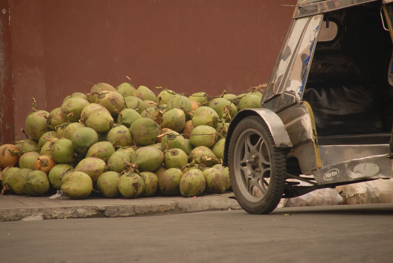 Kokosnuss und Rad