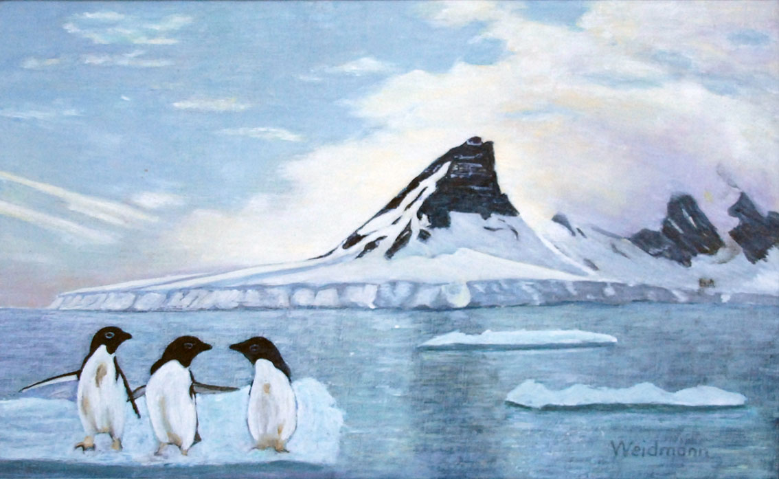 antarktis-1