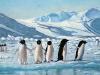 antarktis-2